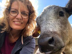 coach boerderij koeien